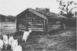 Dette er den gamle lørsetra på Finnøyvollen som ligger ved vegen til Reitan, vest for Stugusjøen. Garden Berget, Rønningen i Ås drev setring her.