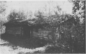 Arnebua på Arnevollen ved vestenden av Stugusjøen er en av de eldste bevarte seterbuene i Tydal. I bua fins innskåret årstallet 1739. Bua hadde jordgolv med steinheller rundt åren. Det var ingen vinduer, men små glugger med skyveluke. Rundt veggene var det faste sengebenker og sitte- eller arbeidsbenker. Bua har dør inn fra det åpne «sjølet» mellom oppholdsrom og småfefjøs. Bildet er tatt i 1983.