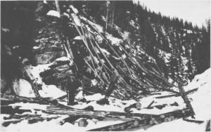 Salgstømmer fra Tydal ble fløta fra side-elvene eller kjørt ned til Nea og fløta videre nedover til sagbruka i Selbu eller ved Nidelva. Her foregår renning av tømmer ved Henbjørga i 1930-åra. Tømmerhoggere var Gustav Henmo (som har tatt bildet), Olaus Eggen til venstre og Edvart Aas til høgre.