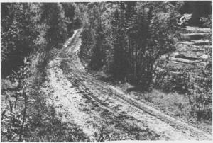 Gammelvegen fra Kirkvoll og oppover mot Løvøya gikk delvis langs Tya. Her er et stykke av vegen ved Småfossan. I dag er det mest traktorer som bruker vegen.