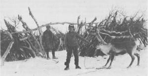 Bjørketrø i Endalen, grensetraktene mellom Sverige og Norge. Denne trøa har blitt brukt til å samle reinen i under slakting. Personen til venstre (bakerst) er Elias Brandtfjell, gutten i forgrunnen er ukjent.