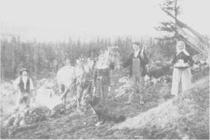 Nybrottsarbeid på Gjerdesenget i Gres li i 1921. Fra venstre Ingebrigt Bjørgen, Anna Græsli, hennes datter Antonie, Albert Græsli og bestemor Ingeborg Græsli.