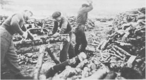 Bjørkeved sages og hogges i Stugudal våren 1941. Fra venstre Dagfinn Vold (fra Trondheim), Olaus H. Aune og Hans Lian. Fjerdemann på arbeidslaget var Leif Vold fra Trondheim, og disse fire hogg 20 favner ved i løpet av våren.