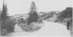Vegstellet tok en stor del av kommunens inntekter, særlig det første tiåret etter 1945. Så ble det også en standardforskjell mellom gamlevegen (til venstre) og nyvegen (til høgre). Bildet er tatt ved Nebrua mot Ås sentrum.
