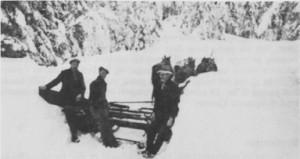 Det var ikke så greitt å holde den gamle Kubjørgvegen åpen om vinteren. Her foregår plogkjøring med fire hester i 1945. Kjørerne er Lars Græsli, Olav Ås og Jon P. Græsli.