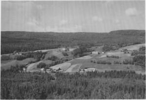 Hilmo sett fra Bjørgen. (1993)