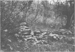 Etter Svartedauden ble mange garder eller bruk lagt øde. Det skjedde særlig i utkantområda som hadde dårligst vilkår for jordbruk. Bildet viser rester etter ei hustuft i Molia ovafor Mosjøen. Den er såpass godt bevart at den skriver seg etter alt å dømme fra tida etter middelalderen. G. Schøningfikk høre av folk i Tydal i 1773 at mellom Løvøya og Stugudal var der hustomter på «adskillige Steder i Udmarken og Skovene».
