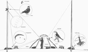 Stilisert riss av en av metodene for å fange levende falker. En fugl (varsler) satt tjora utapå hytteveggen og skrek når en falk nærma seg. Falkefangeren slapp da øyeblikkelig ned den kunstige fjærfalken (til høgre), som flagra i vinden i toppen av stolpen. I stedet heiste han opp ei levende due i stolpen til venstre. Ved foten av denne stolpen var det festa et slagnett eller klappnett. Når storfalken stupte mot dua, trekte falkefangeren denne raskt ned til bakken og i posisjon for slagnettet. Falken stupte etter, og fangstmannen trekte i snora til nettet som klappa sammen over begge fuglene. I beste fall kunne lokkedua brukes om igjen. Tegning av Vigo Ree i Årbok nr. 10 for Norsk Skogbruksmuseum.