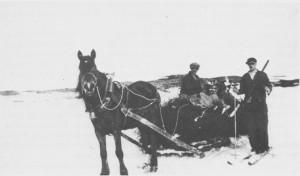Bjørkeris var et vanlig attåtfor til husdyra i Tydal og ble brukt til langt ut i dette århundret. Her kjører Peder Berggård og en annen kar heim bjørkeris fra Langfallsjøen en gang i mellomkrigstida.