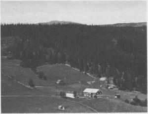 Skultrøa ligger lengst mot øst i Østby. Her bodde skolemesterne Ole Evensen Østby (1751 1835) og sønnen Even Olsen (17821864). Plassen fikk navnet sitt etter skolemesterne.