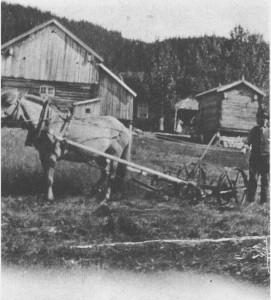 Hesteslåmaskina var ei av de største tekniske nyvinningene i jordbruket omkring 1900. I 1907 var det 49 slåmaskiner i Tydal. På bildet er det Petter Korsvoll som slår graset på Greslivoll på 1920- tallet.