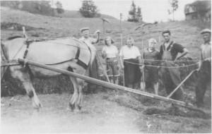 Karl J. Gullikstad fra Røros var lærer i Tydal fra 1924 til 1968. Han var med i kommunestyret i mellomkrigstida og ble ordfører fra 1941 til 1945. Bildet er tatt i Gjerdesenget i 1943. Gullikstad (til venstre) hjelper til med slåttonna. De andre på bildet er fra venstre Ingrid Renå (g. Aas), Laura Græsli, Helge Græsli, Odd Myrmo og Albert Græsli.