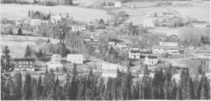 Rønningsgjerdet, det første kommunale boligfeltet, slik det så ut i 1991.